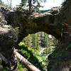 Natural Bridge, Yellowstone