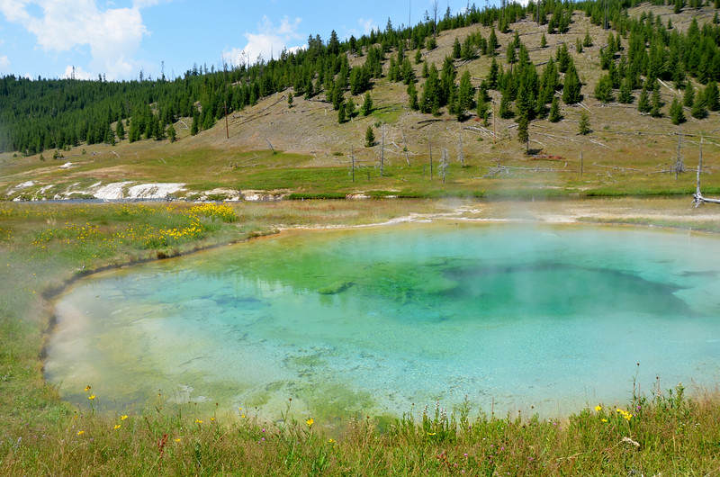 Hot Spring, Yellowstone