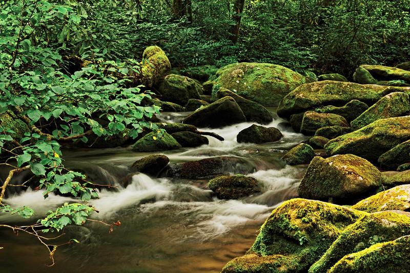 Mountain Stream, Joyce Kilmer National Forest