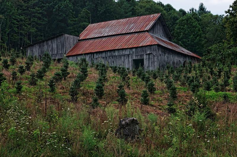 Ashe County Barn