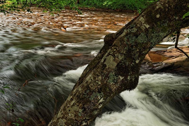 Stream near Mountain Farm Museum