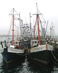 Provincetown,MA Fishing Fleet off Town Pier