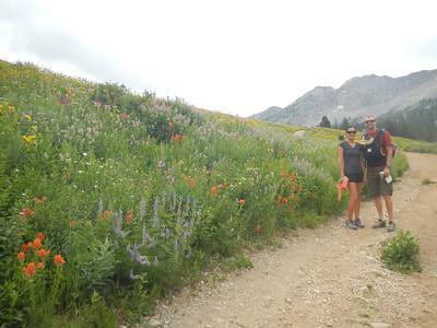 Jayna, Shane and Malia hiking through beautiful wildflowers near Snowbird.