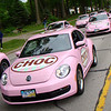 pink Malley's bugs