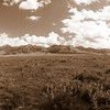 Sun Ranch Panoramic View - Sepia Tone with a mixture of Effects