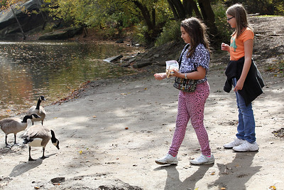 Friends Halena Bliss, age 10, of Elyria and Alayna Green (right), age 10 of Lorain, feed the ducks at Cascade park. photo by Ray Riedel