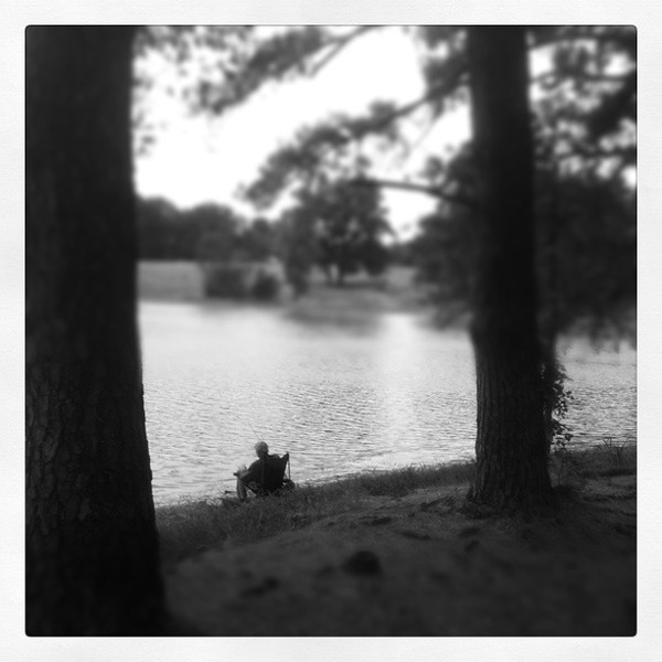 Pine Lake, Memphis, Shot using an I phone