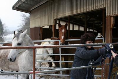 Sunny und Shiri im Schryberhof 20.12.09