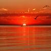 Morning row Gilson Beach sunrise_