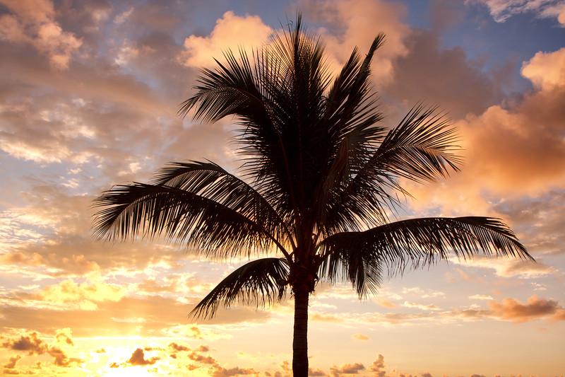 Boca sunrise#6