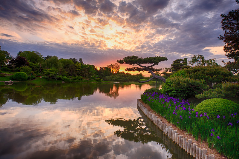 Chicago Botanic Gardens sunset 1
