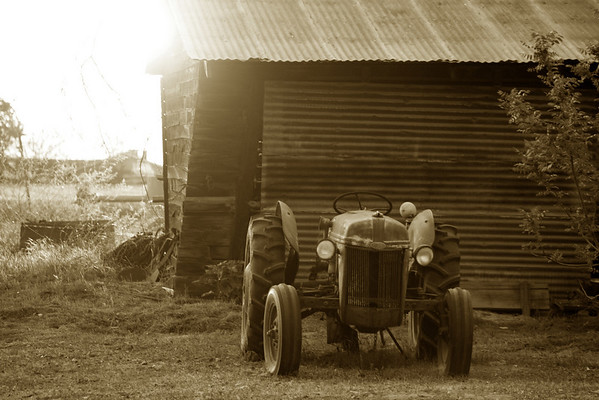 Sunset-Bohnsack Farm