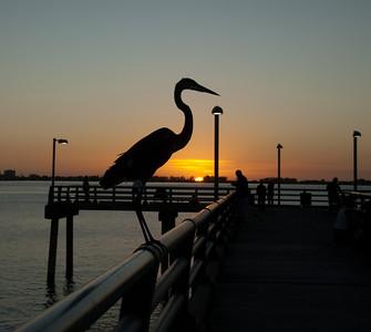 Sunset with Carol