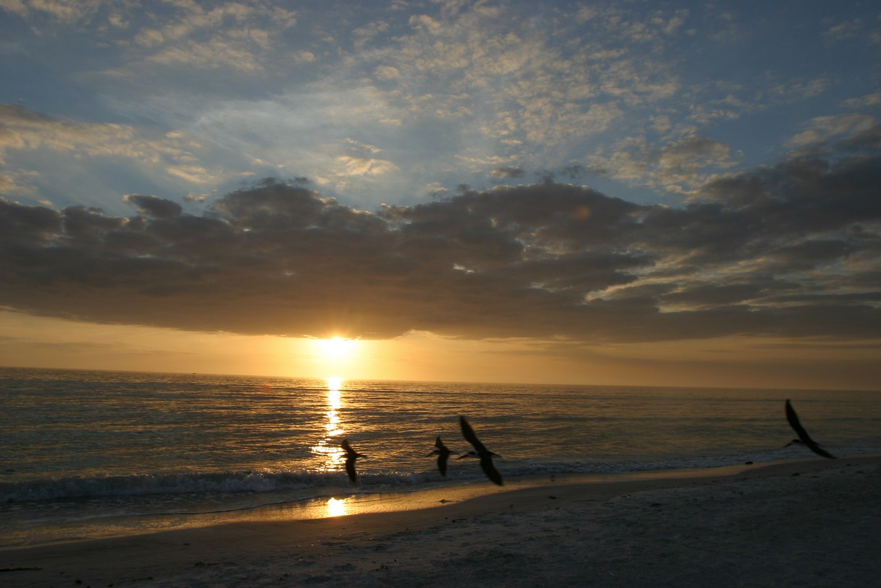 West Coast of Florida, USA