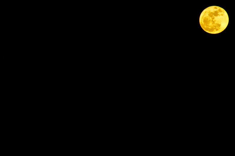 _DSC0881