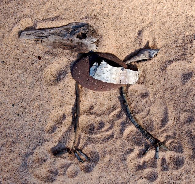 Birdus Tonyficidus