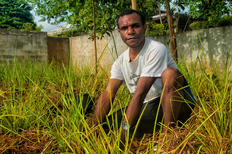Gerson works in Vetiver Grass nursery, Sentani, Papua, Indonesia, November 2012.