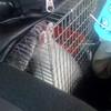 Fluffy sleeping in car