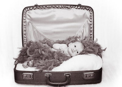 Suitcase and Feathers - Old bw (1 of 1)