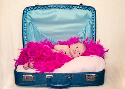 Suitcase and Feathers - sweet colors (1 of 1)