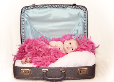 Suitcase and Feathers - Old Timey (1 of 1)