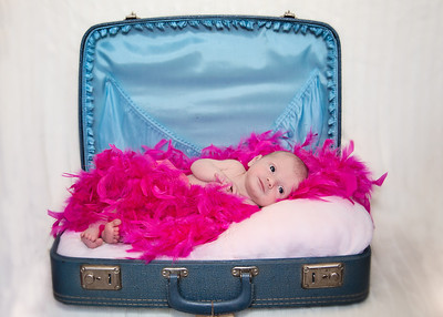 Suitcase and Feathers (1 of 1)