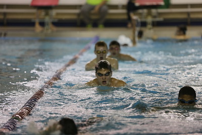 Winter2014BBSwimming 847