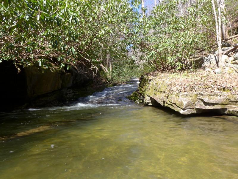 Swimming hole on Reedy Creek