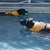 Swimmer15