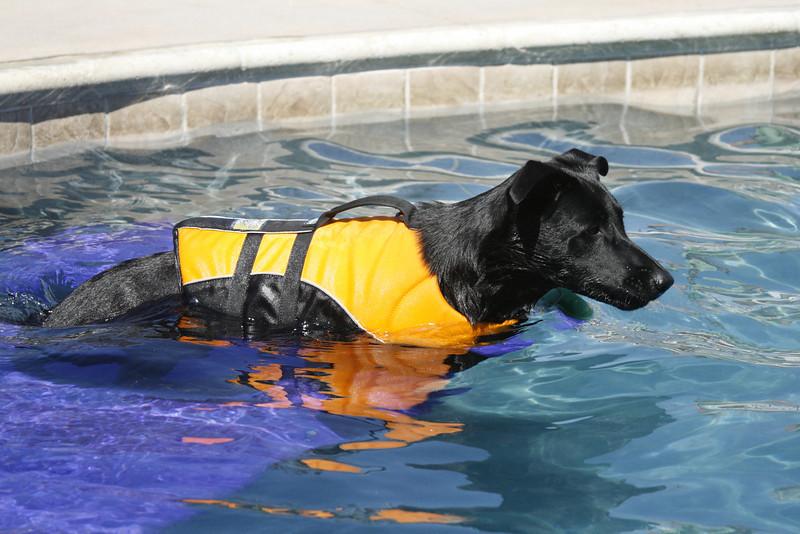 Swimmer21