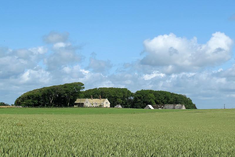 Orchard Hill Farm shelters in its semi-circlular wind-break