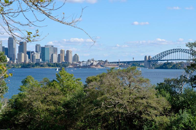 View back toward city from Ashton park