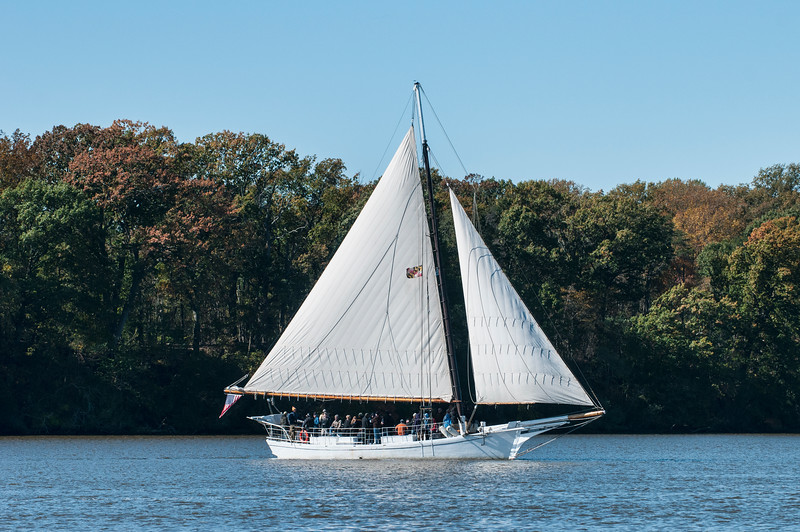 Skipjack  SIGSBEE   out of Baltimore, Md<br /> <br /> Chestertown, Md  2011