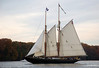 "Schooner Virginia   <a href=""http://www.schoonervirginia.org/"">http://www.schoonervirginia.org/</a><br /> <br />  <a href=""http://www.sultanaprojects.org/thefleet.htm"">http://www.sultanaprojects.org/thefleet.htm</a>"