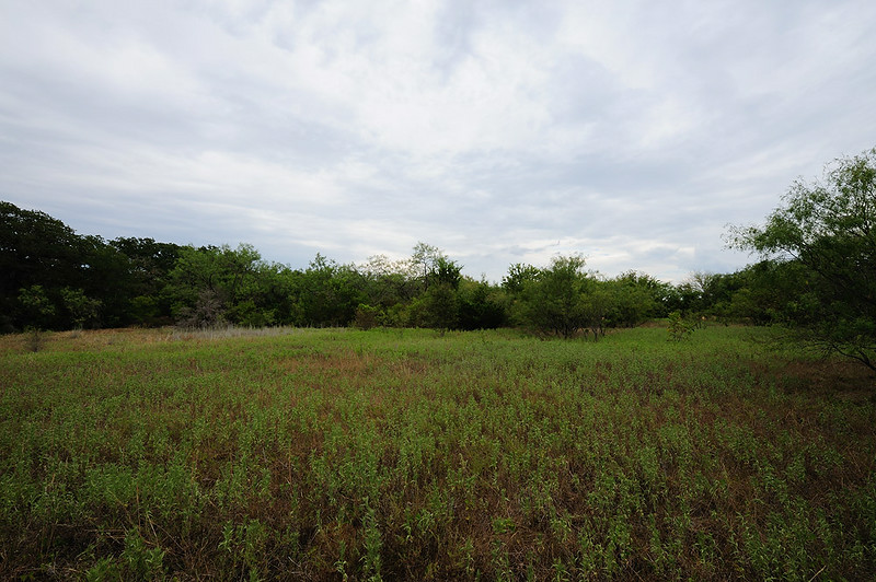 VIEW OF BACK PASTURE FROM<br /> NORTH SIDE TO SOUTH SIDE