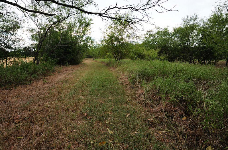 IN BACK PASTURE, WALKING UP THE <br /> TRAIL FROM BACK TO FRONT<br /> WEST TO EAST ALONG SOUTH FENCE