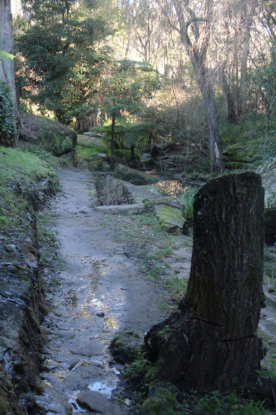 Zig Zag Creek with part of the old rail bed visible.