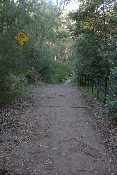 Bike track leading to Zig Zag Creek.