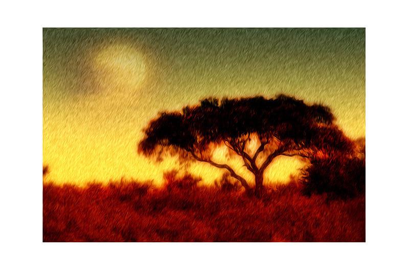Sunrise Africa