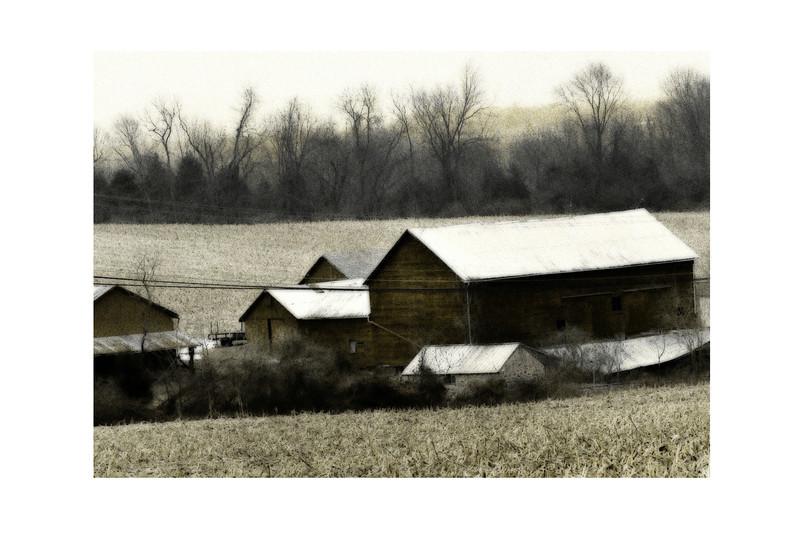 Bleached Barn