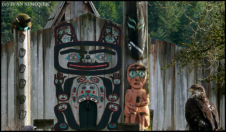 """THE AUDIENCE"",a young bald eagle and Shakes Island totems,Wrangell,Alaska,USA."