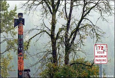 """CIVILIZATION"",Eagle totem,Shakes Island,Wrangell,Alaska,USA."