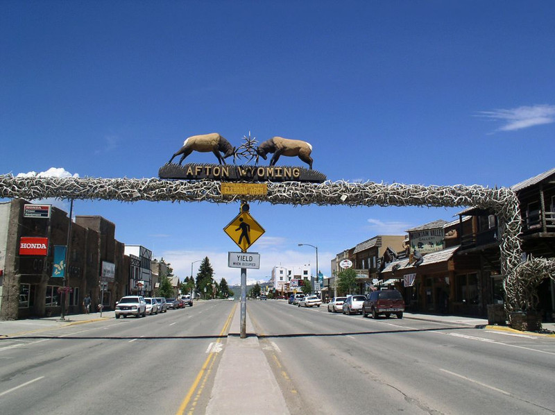 SO MANY THOUSANDS OF ELK DIE IN THE NATIONAL FOREST SURROUNDING THIS AREA THEY CANT DECIDE WHAT TO DO WITH ALL OF THE HORNS!