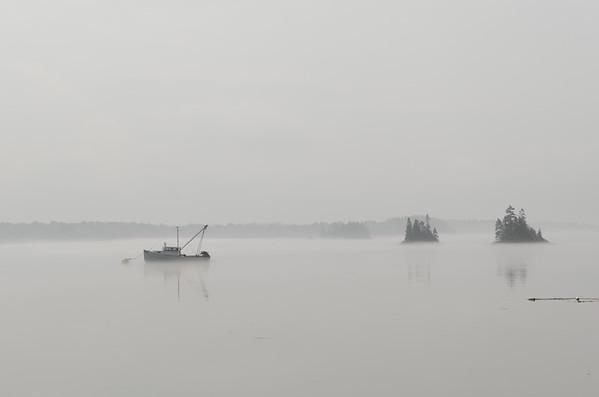 Cobscook Bay,  Maine.