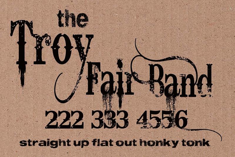 troy fair 12