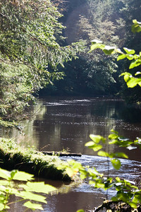 Yakoun River
