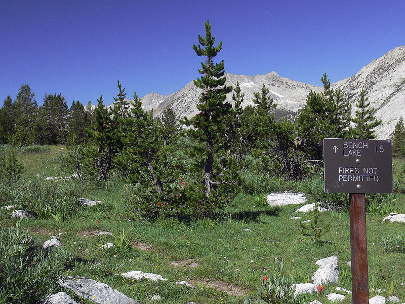 At the intersection of the John Muir/Bench Lake trails, with the mountains of the Kings River trench in the background.