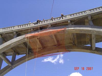 Tahoe Bear & Bridge
