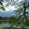 Lake Gardens in Taiping.  One of the most picturesque places we've been.