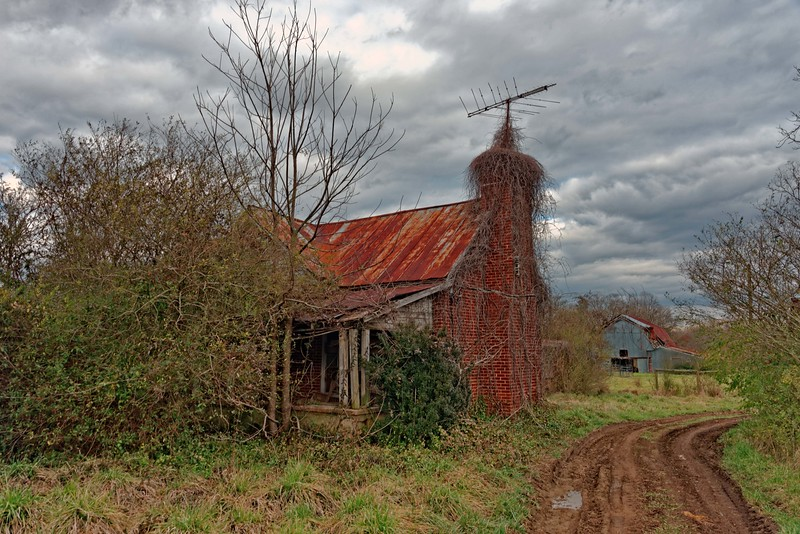 Another Abandoned Homeplace 1